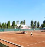 tenis_descriere